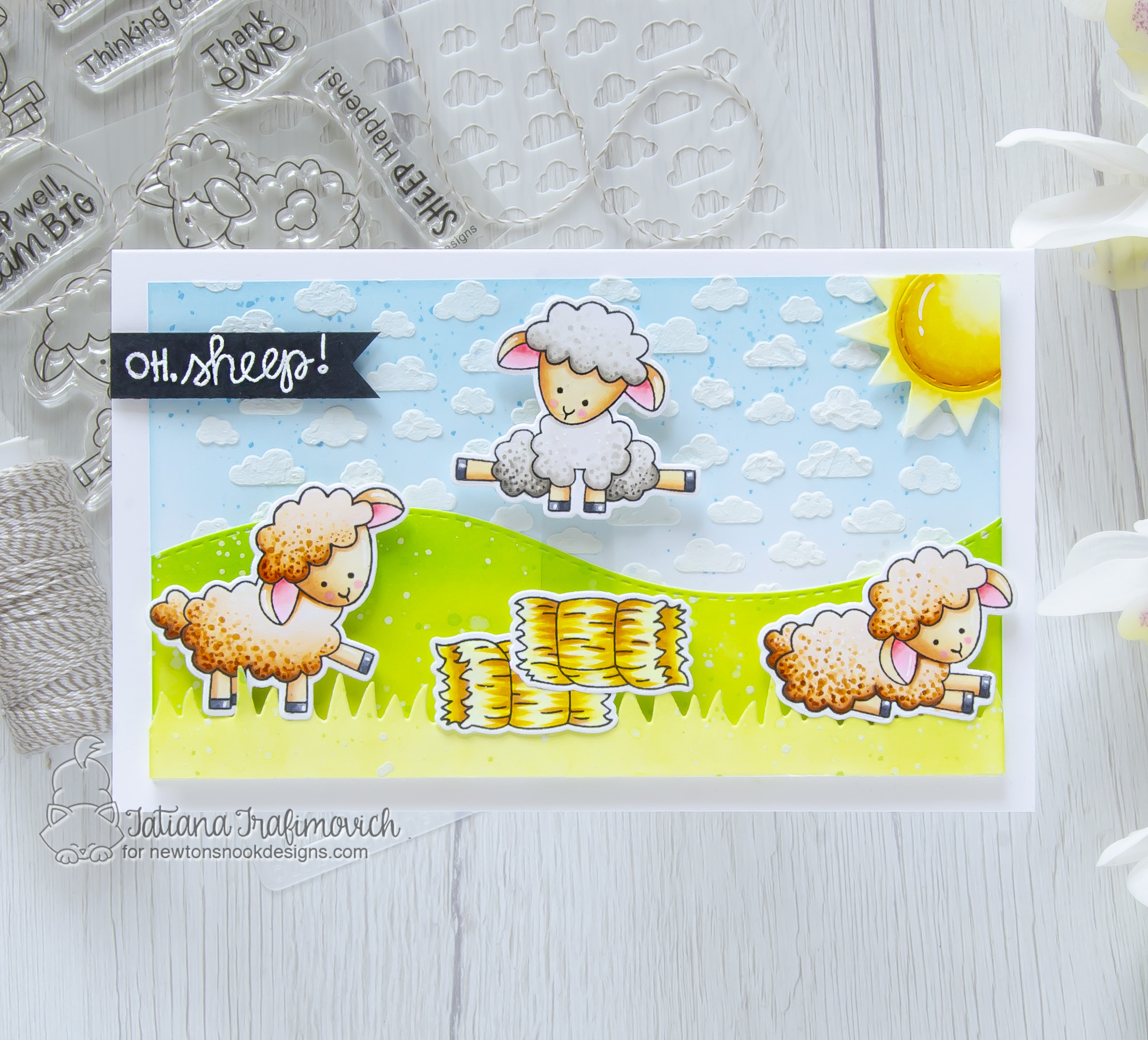 Oh, Sheep!!! #handmade card by Tatiana Trafimovich #tatianacraftandart - Baa stamp set by Newton's Nook Designs #newtonsnook
