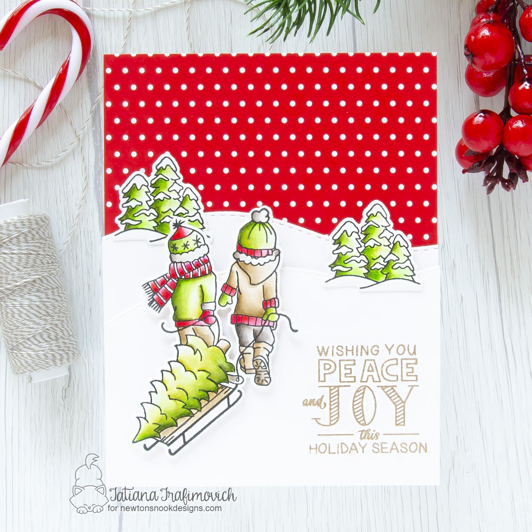 Peace & Joy #handmade card by Tatiana Trafimovich #tatianacraftandart - Holiday Home stamp set by Newton's Nook Designs #newtonsnook